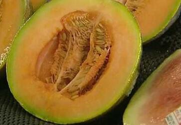 澳大利亚多人因食甜瓜感染细菌提醒注意安全