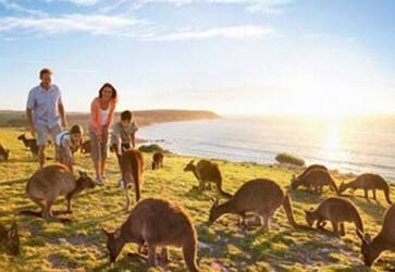 有个人澳大利亚旅游签证能能跟团出行吗?